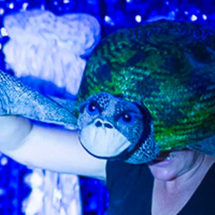 Oddysea is an interactive multi-sensory tale set in a tactile underwater wonderland.